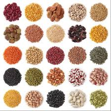 Fruits and Vegetable Seeds